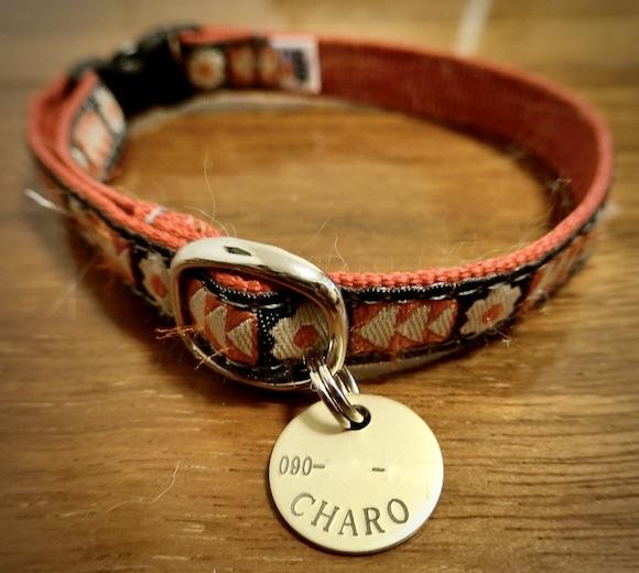 チャロのネームプレートと首輪
